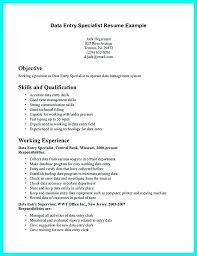 Sample Resume Of Data Entry Clerk Loopycostumes Com