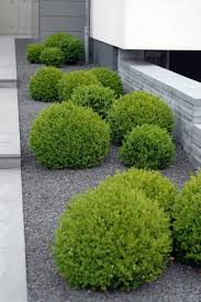 Small Picture Best 20 Minimalist garden ideas on Pinterest Simple garden