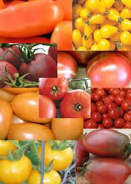 Heirloom Tomato Seed Package