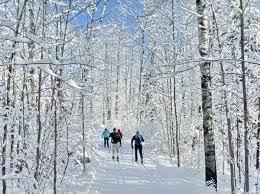 Wasi Ontario Ski Trails