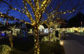 the wedding garden is decorated as part of the florida botanical gardens foundation s holiday lights in