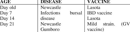Broiler Vaccination Program Download Table