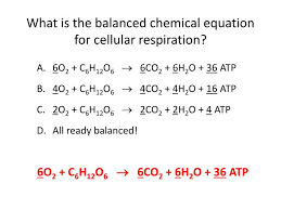 balanced chemical equation for cell respiration