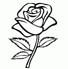 Small Picture Flower Coloring Pages 14 Coloring Kids