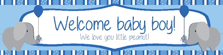 Welcome Home Baby Boy Banner Welcome Baby Boy Banner With Elephants Diddams Party Toy