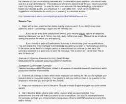 Resume Examples For College Students New Template Resume Summary