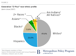 Welfare Statistics By Race 2017 Chart
