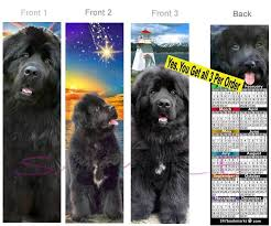 details about 3 set newfoundland 2019 calendar bookmark dog puppy card perfect gift