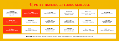 Puppy Eating Chart Puppy Feeding Schedule 11 Feeding Tips Pupford