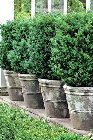 Raised Bed Herb Garden Design Raised Herb Garden Ideas Wallpaper Container Garden Ideas Uk
