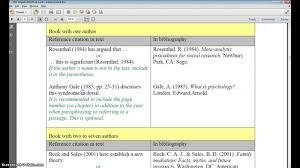 010 In Text Citation Book Apa Format Bibmeapaimage Research Museumlegs