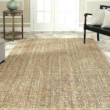 best type of area rug for allergies designs