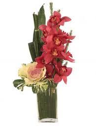 uptown orchids arrangement