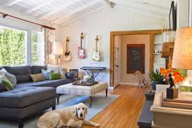 Small Picture Tips for a Pet Friendly Home HGTV