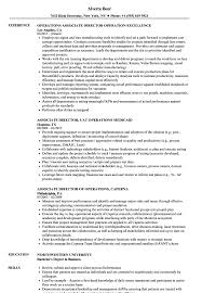 Operations Associate Director Resume Samples Velvet Jobs