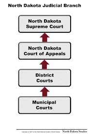Executive Branch Flow Chart Citizenship North Dakota Studies