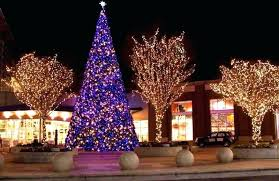outdoor tree lighting ideas. Outdoor Christmas Lights Ideas For Trees Image Of Nice . Tree Lighting E