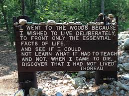 Thoreau Walden Quotes Interesting Living On Earth Henry David Thoreau Turns 48