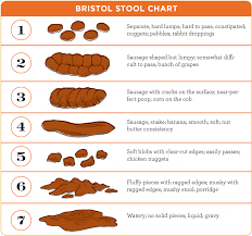 Stool Movement Chart Bristol Stool Chart Functional Nutrition Alliance