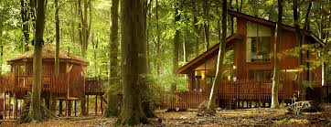 Treehouse Holidays Ten Breaks In The Branches For Eternal Family Treehouse Holidays Uk