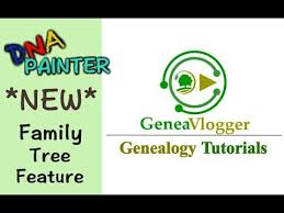 X Dna Fan Chart Dna Painters New Family Tree Feature And Dna Filters Genealogy Tutorials