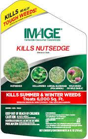 Nutsedge Herbicides Image Kills Nutsedge Weed Killer Concentrate