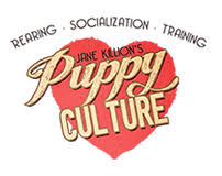 Exercise Guidelines For Puppies By Puppy Culture Inugami