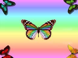 Butterfly Wallpaper for My Desktop ...