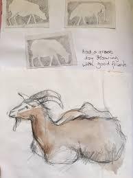 Sketching Animals Jm Artandstitch Blog