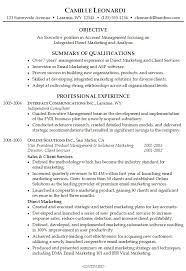 Best Solutions of Sample Professional Summary Resume With Resume ...