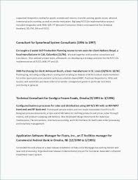 Hr Contract Templates Cool Hr Consultant Proposal Unique Business Service Contract Template