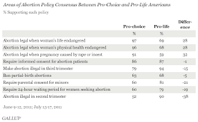 plenty of common ground found in abortion debate areas of abortion policy consensus between pro choice and pro life americans
