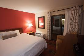 Deluxe One Bedroom Condo