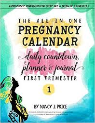 The All In One Pregnancy Calendar Daily Countdown Planner
