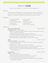 Modern Resume Template Free Graphic Resume Templates Free Resume