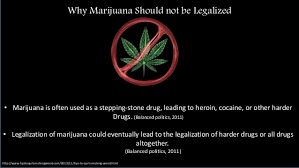 marijuana should not be legalized essay % original helpful hints writing dissertations comparative politics