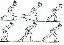 Методика обучения технике попеременно двухшагового хода в м классе Рис 4а