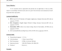 Job Resume Objective Examples Oloschurchtp Com