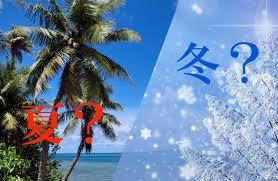 冬なのに夏祭り あかおか冬の夏祭りが面白そう ありんど高知
