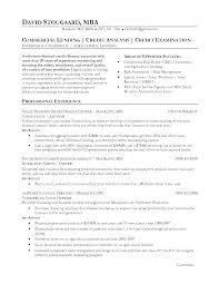 Credit Analyst Resume Example Credit Analyst Loans Minneapolis St Paul Mn Resume David Stougaard