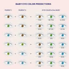Eye Color Probability Chart Recessive Genes Stock Illustrations 29 Recessive Genes