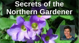 Secrets of The Northern Gardener with Melanie Watts – Back To My Garden