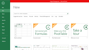 financial management excel excel templates for project managers