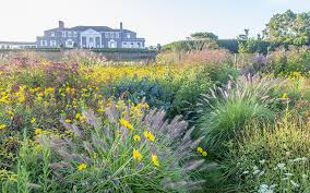 Small Picture Garden Design Magazine Autumn 2015 Garden Design