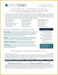 Executive Resumes Templates New Executive Resume Template Psychicnightsco