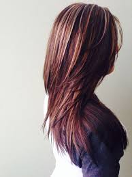 Dark Brown Color With Blonde And