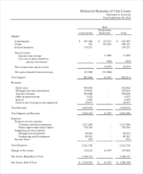 Financial Statement Examples How To Create Non Profit Financial Statements 5 Best