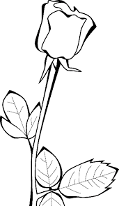 Small Picture Rose Coloring Pages For Girls Flower Coloring pages of