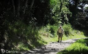 """Résultat de recherche d'images pour """"sentier dans forêt avec promeneurs"""""""