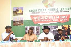 Image result for Niger Delta Young Leaders Stakeholders forum